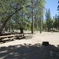 Double/group site at San Gorgonio Campground.- San Gorgonio Campground
