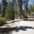 Barton Flats Campground.- Barton Flats Campground