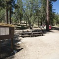 Double campsite at Barton Flats Campground.- Barton Flats Campground