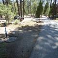 Potable water at Barton Flats Campground.- Barton Flats Campground