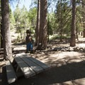 Picnic area at Barton Flats Recreation Area Visitor Center.- Barton Flats Recreation Area