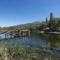 Jenks Lake.- Jenks Lake