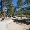 Day use picnic area at Jenks Lake.- Jenks Lake