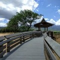 The beautiful boardwalk is accessible to all visitors.- Keālia Pond National Wildlife Refuge