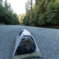 Backcountry camping along Redwood Creek.- Tall Trees Grove