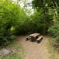 Typical picnic bench.- McDowell Creek Falls County Park