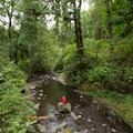 McDowell Creek attracts many summer visitors.- McDowell Creek Falls County Park