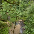 The view above Royal Terrace Falls.- McDowell Creek Falls County Park