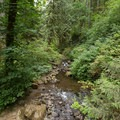 McDowell Creek.- McDowell Creek Falls County Park