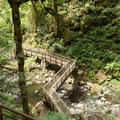 The wooden boardwalk and platforms surrounding Majestic Falls.- McDowell Creek Falls County Park