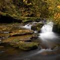 McDowell Creek below lower McDowell Creek Falls.- McDowell Creek Falls County Park