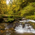 McDowell Creek below lower McDowell Creek Falls in fall.- McDowell Creek Falls County Park