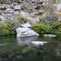 The spring sits underneath a rock behind the larger boulder.- Pyramid Hot Spring