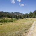 Grassy meadows characterize the first 2 miles of the hike.- Bridal Veil Falls via Cow Creek Trail