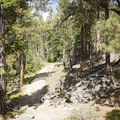 The trail begins to ascend near Bridal Veil Falls.- Bridal Veil Falls via Cow Creek Trail