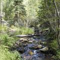 The creek below Bridal Veil Falls.- Bridal Veil Falls via Cow Creek Trail