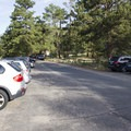 There is ample parking at the Lawn Lake Trailhead, though it is very busy!- Ypsilon Lake
