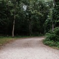 Road to cabins L through N and the secluded beach.- Burlingame State Park Campground