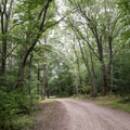 The 500 loop is special in that it feels like a little island away from the rest of the campground. Its seclusion is great to escape the traffic of central grounds, but it is farther away from the amenities the grounds have to offer, including the pond.- Burlingame State Park Campground