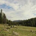 Trail along West Tensleep Creek.- Cloud Peak Via West Tensleep Trailhead