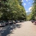Busy parking lot at Buntzen Lake.- Buntzen Lake Beach