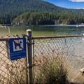 Dog fence.- Buntzen Lake Beach
