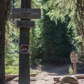 The Trapper Creek Trail leads to the Yoran Lake Trail.- Yoran Lake Trail