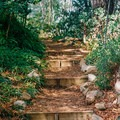 Amir's Garden is built on a hill, so the elevation is constantly changing.- Amir's Garden, Griffith Park