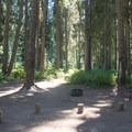 Typical campsite at Trapper Creek Campground.- Trapper Creek Campground