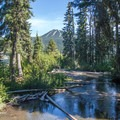 Trapper Creek flows into Odell Lake.- Trapper Creek Campground