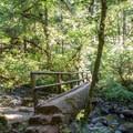 Log bridge over Goodman Creek. - Goodman Creek Trail