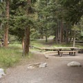 Multiple picnic areas at Endovalley Day Use Area.- Endovalley Day Use Area
