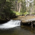 A small cascade along the Fall River.- Endovalley Day Use Area