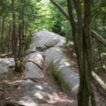 The bedrock makes an interesting trail full of character.- Bald Mountain + Rondaxe Fire Tower