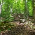 A classic Adirondack trail.- Rocky Mountain