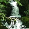 Mouse Tail Falls.- Mount Sterling via Big Creek Loop