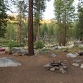 Most campsites are a very short walking distance from a parking area.- Luther Campground