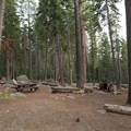 Perhaps the largest and most remote site here.- Luther Campground