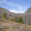 Open views on the way to Pine Creek Lake.- Pine Creek Lake