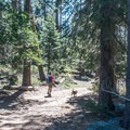 Passing Sardine Lake Campground, the trail is flat and easy at the beginning.- Volcano Lake Hike