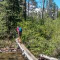 Crossing Sand Creek.- Volcano Lake Hike