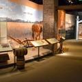 Museum exhibits at George Washington's Mount Vernon. - George Washington's Mount Vernon