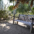 Benches sit throughout the arboretum, making for a good place to take a picnic.- Fullerton Arboretum