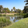 The central lake with large grass areas.- Fullerton Arboretum