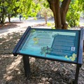 Interpretive signs line many of the walkways and paths throughout the arboretum.- Fullerton Arboretum