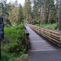 Side trails abound in Cape Disappointment.- Lewis and Clark Discovery Trail