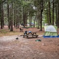 The entire 500 loop is generally the same, with a decently large driveway that opens into a common area. Campsites are bordered by dispersed pine allowing privacy.- Burlingame State Park Campground