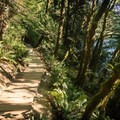 Looking back down the trail toward the parking area.- Blue Pools in Lynn Canyon