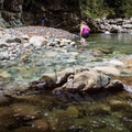 Exploring the canyon.- Blue Pools in Lynn Canyon