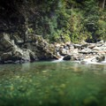 Perhaps they should be called the Green Pools.- Blue Pools in Lynn Canyon